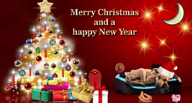 Merry-Christmas And Happy New Year