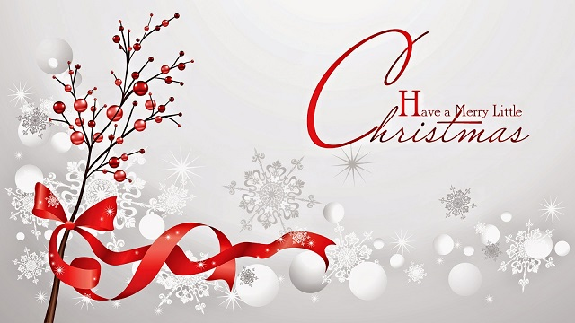 Happy Christmas Day Pic