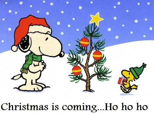 Snoopy Christmas Photos