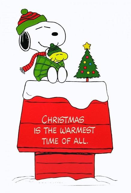 Snoopy Christmas Pics