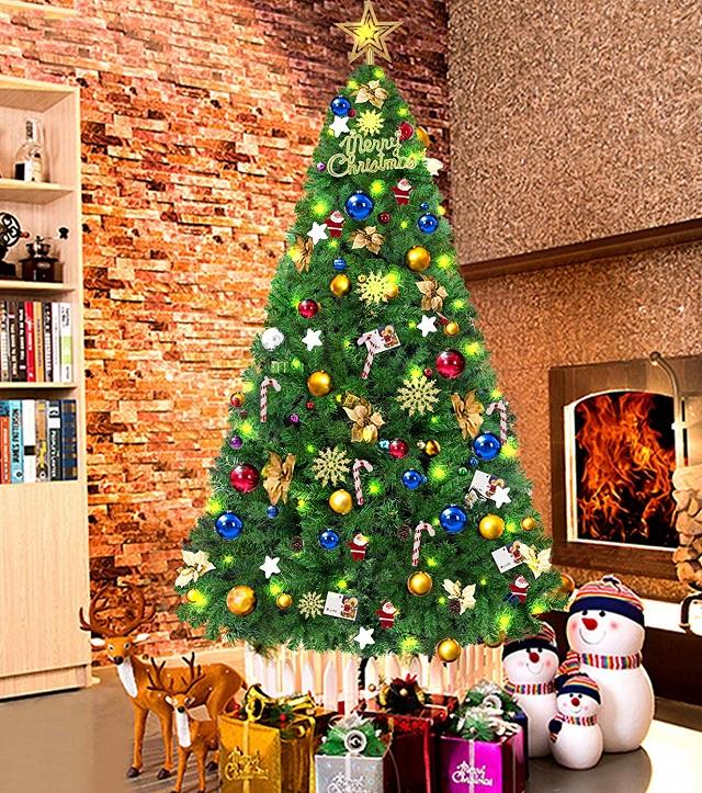 Xmas Tree Picture